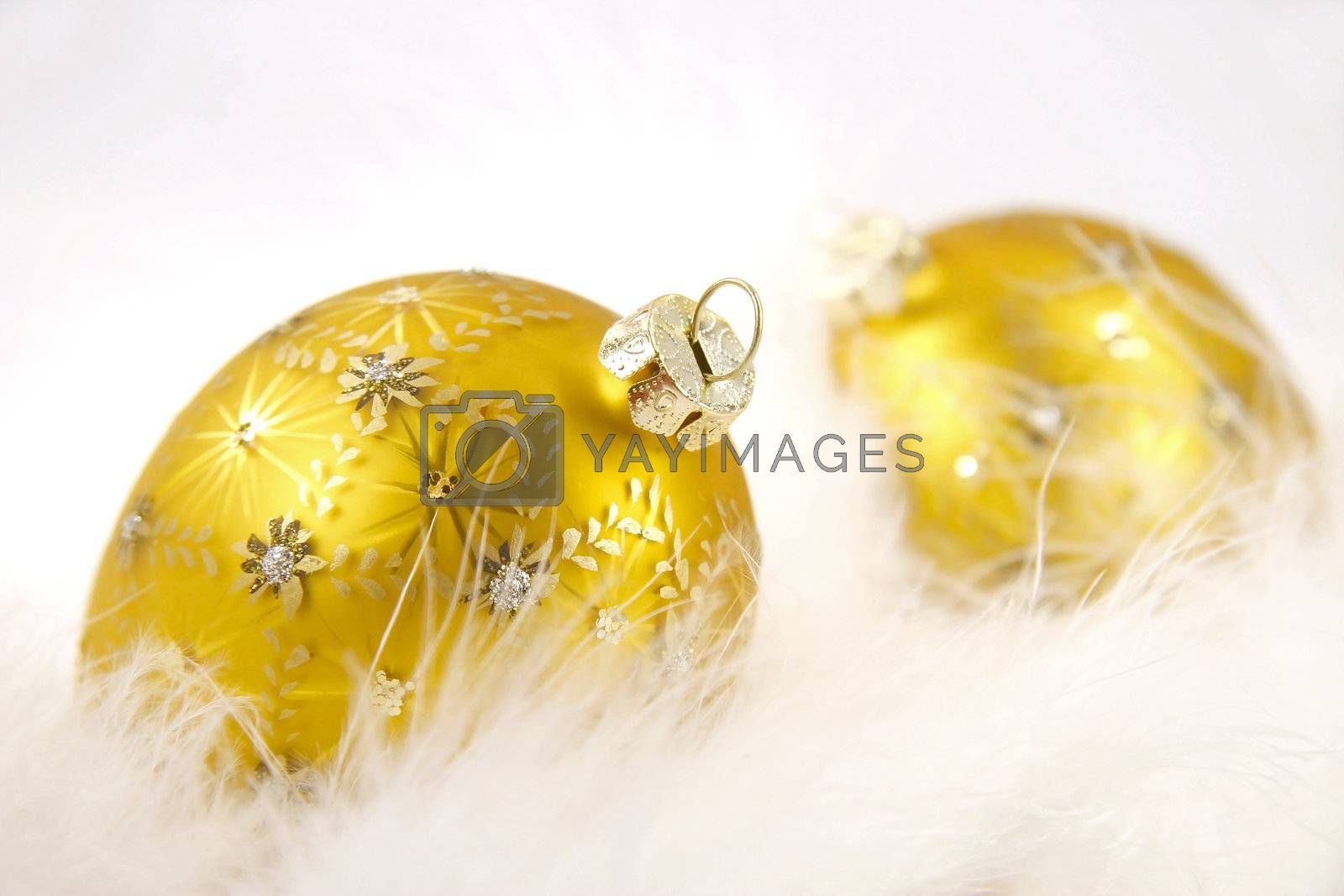 Gold christmas balls  in feathers on isolated white  background