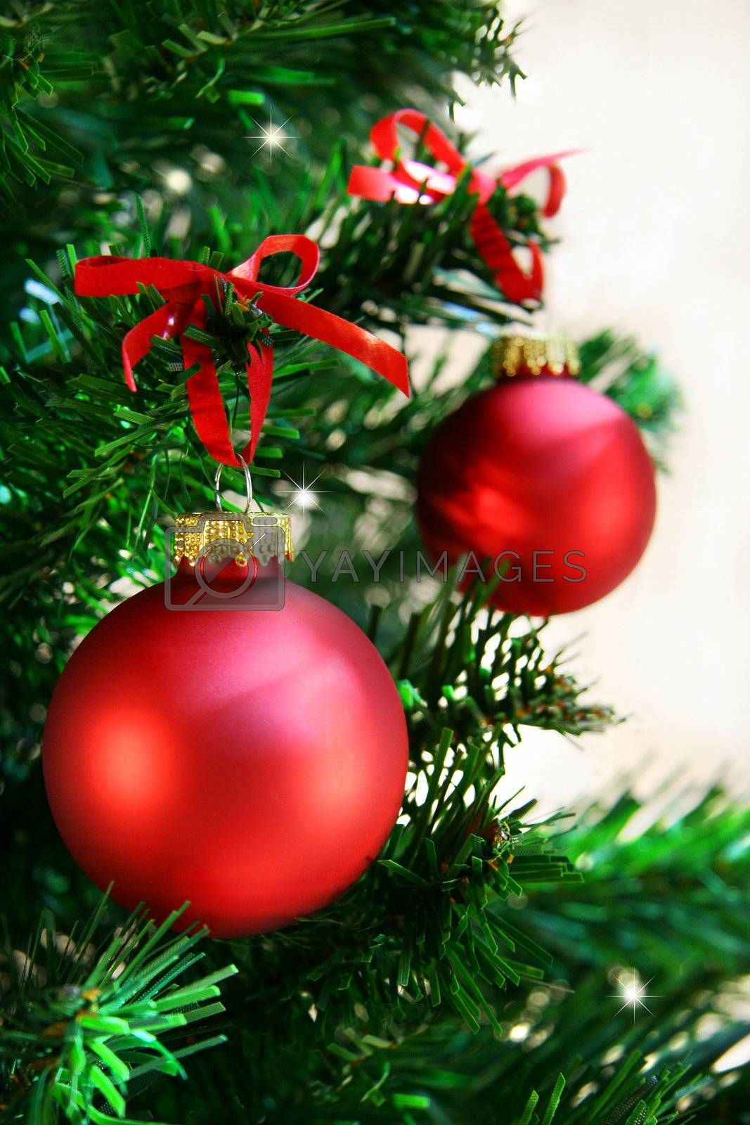 Red balls hanging from christmas tree
