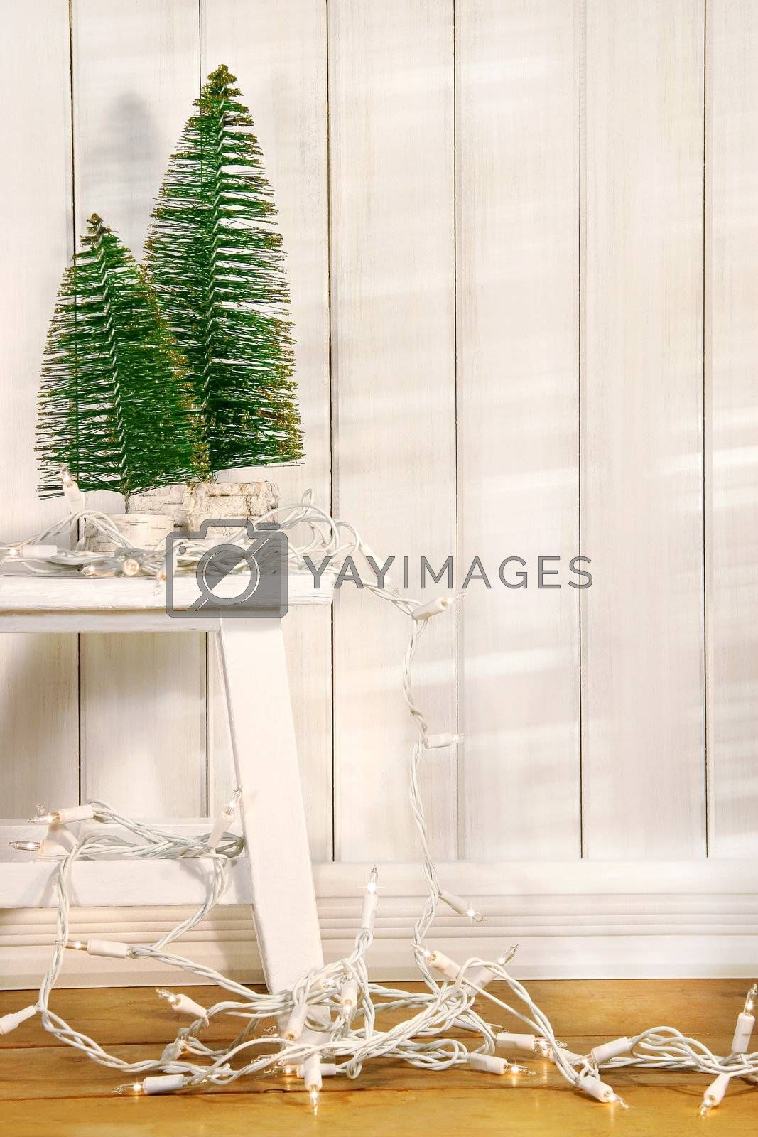 White tree lights hanging from old bench with little green trees