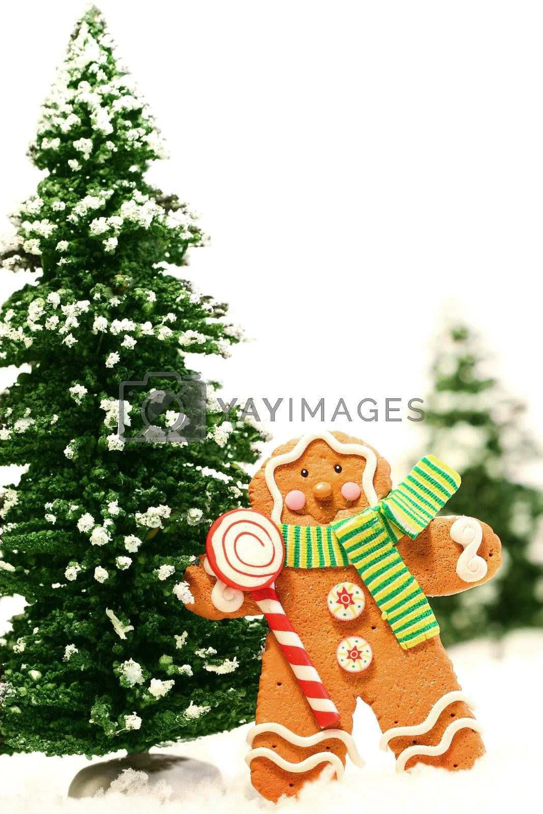 Little gingerbread man with green trees against white background