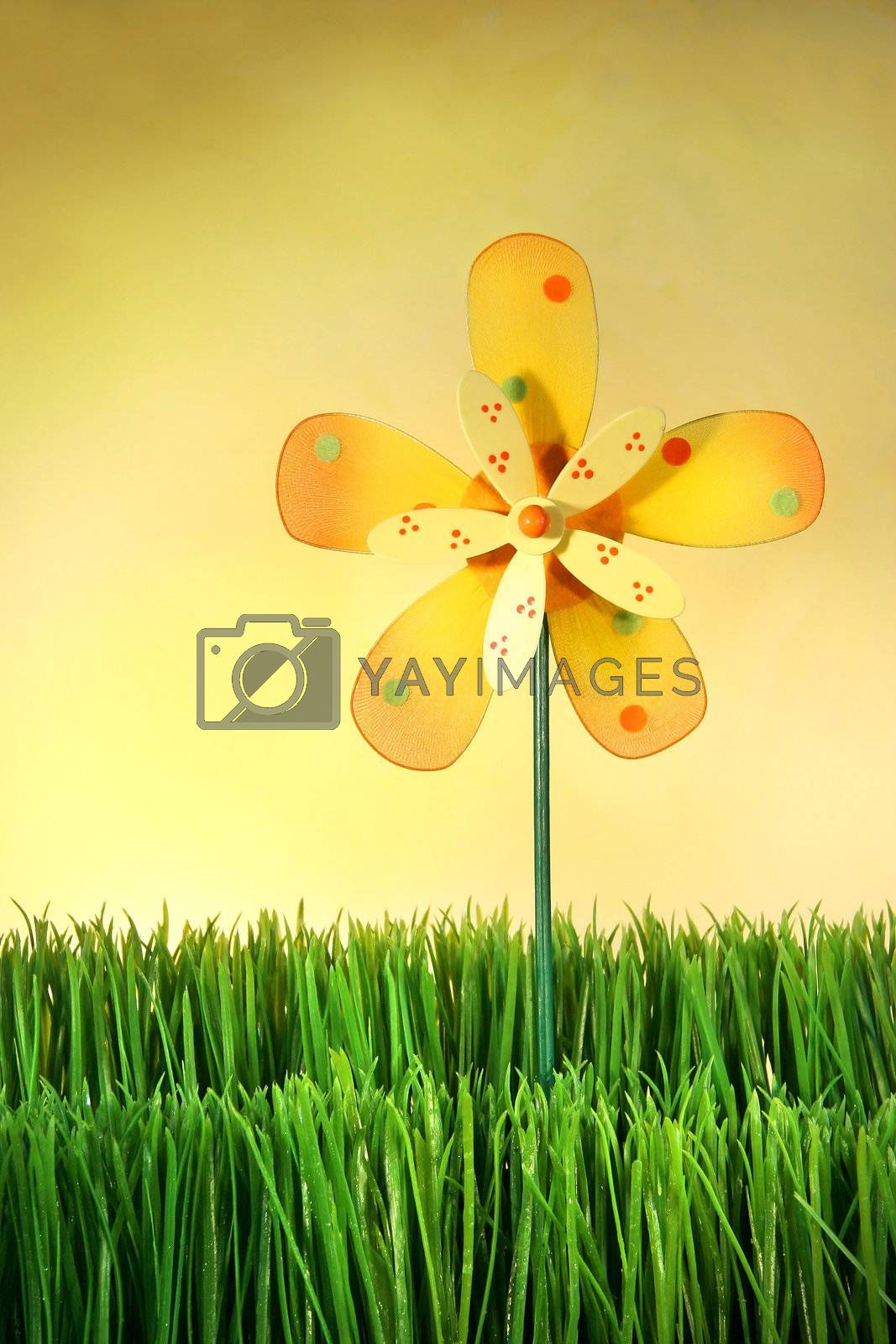 Multi-coloured windmill toy standing in the grass