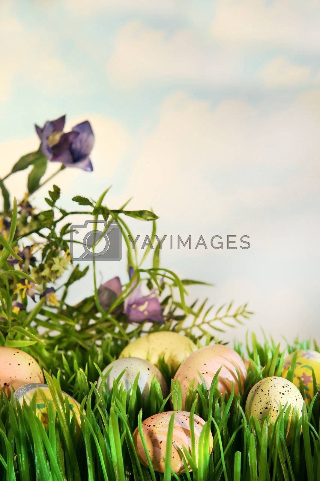 Colorful Easter eggs hidden in the grass