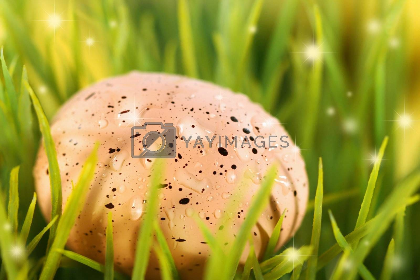 Pink Easter egg hidden in the grass with magical lights