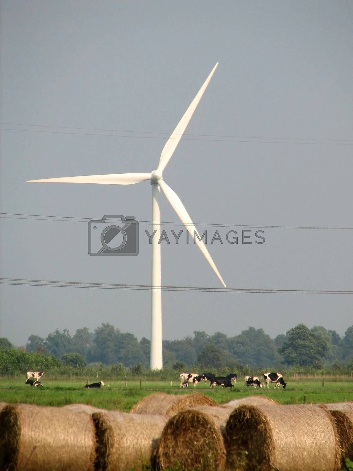 Windmills, northern Germany, in the marshes of the river Weser, 2007