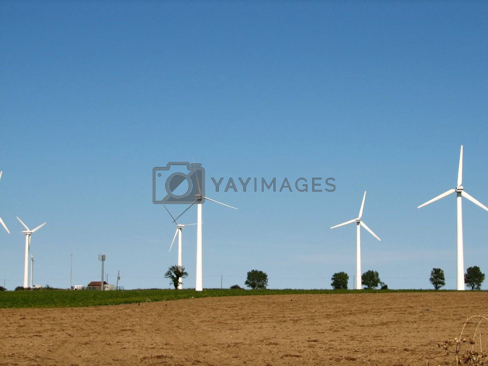 Windmills, Norfolk, England, 2007