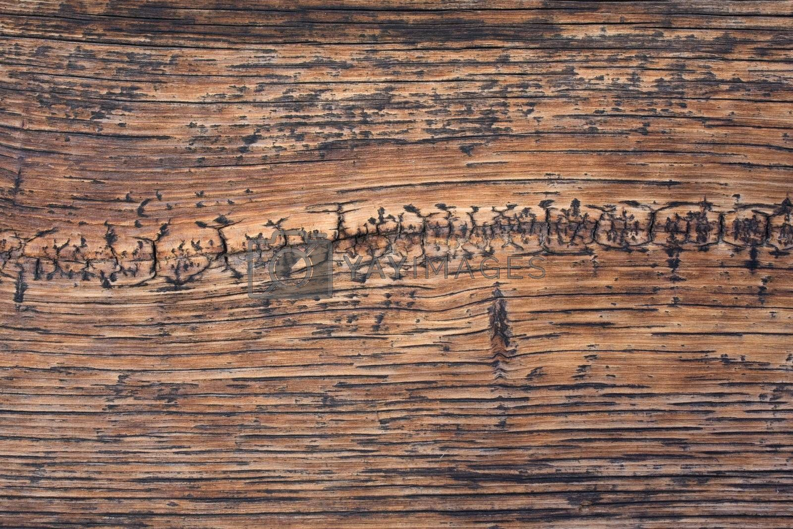 weathered wood background with wavy pattern and cracks