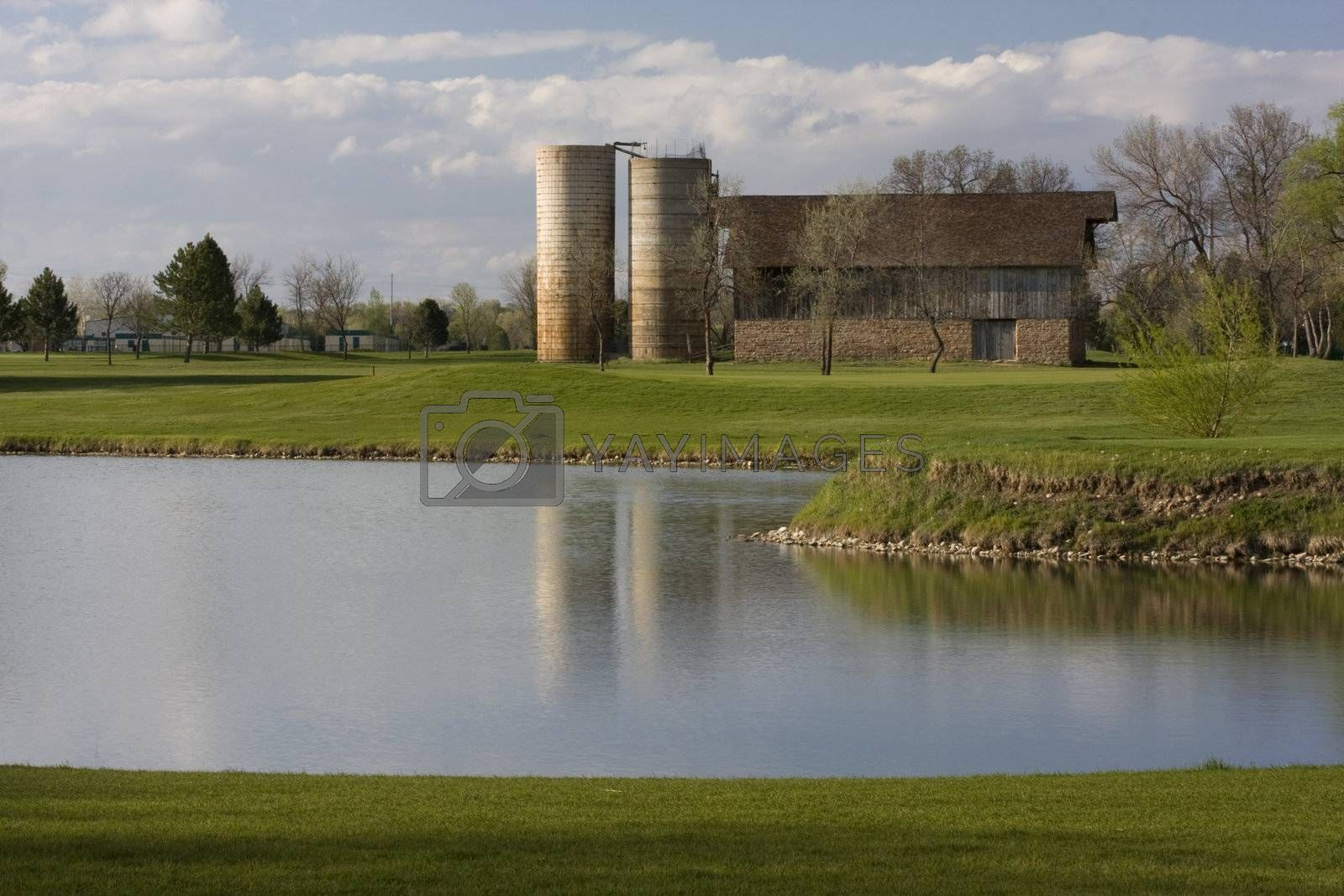 barn with two silos surrounded by green meadows, lake and houses - old farm turned into a golf course
