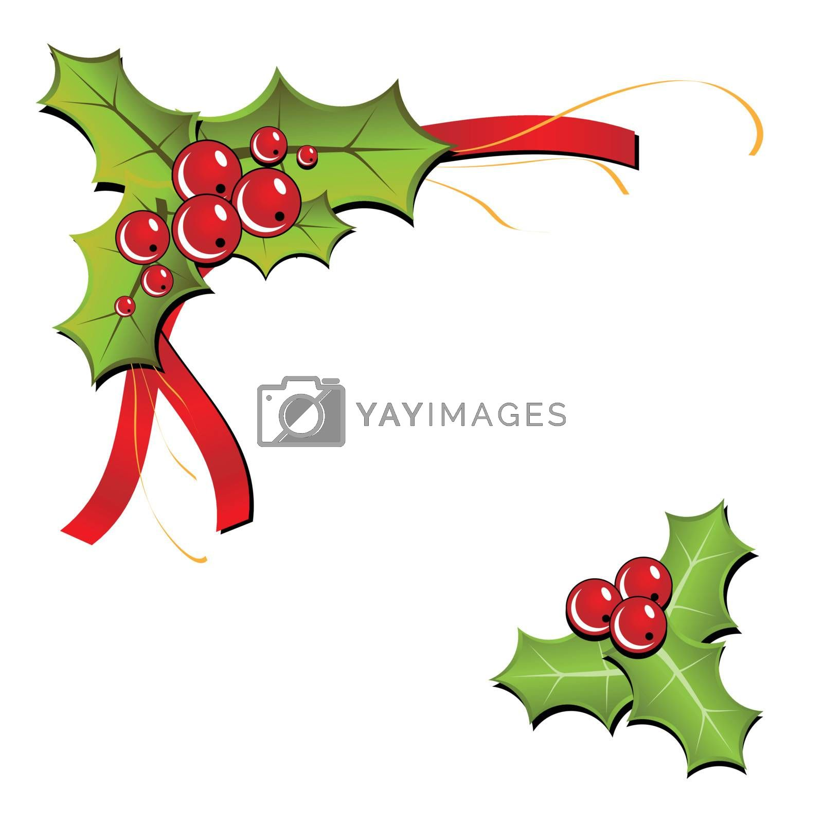 Christmas Holly Illustration. (Vector)
