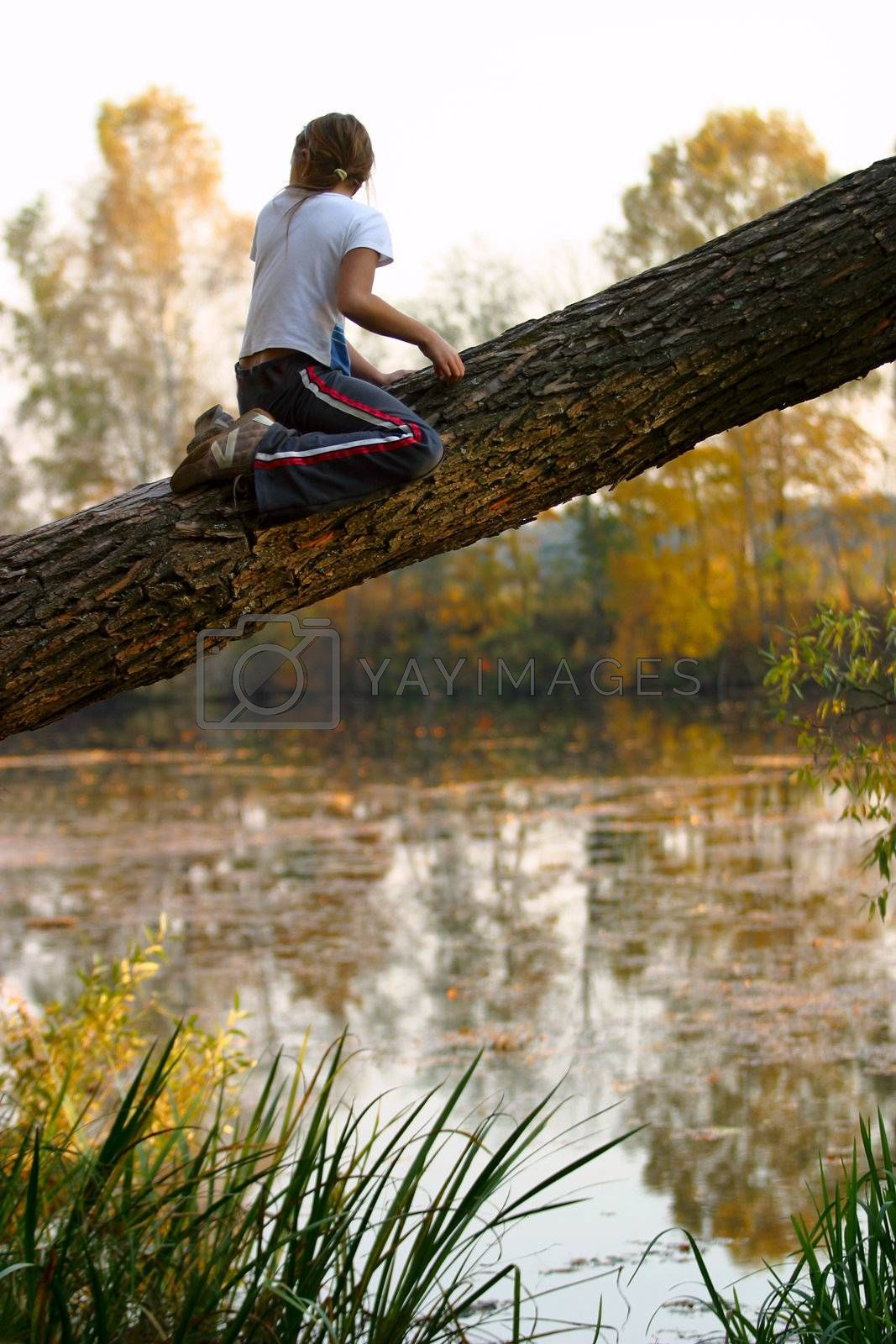 Royalty free image of The girl on a tree by friday