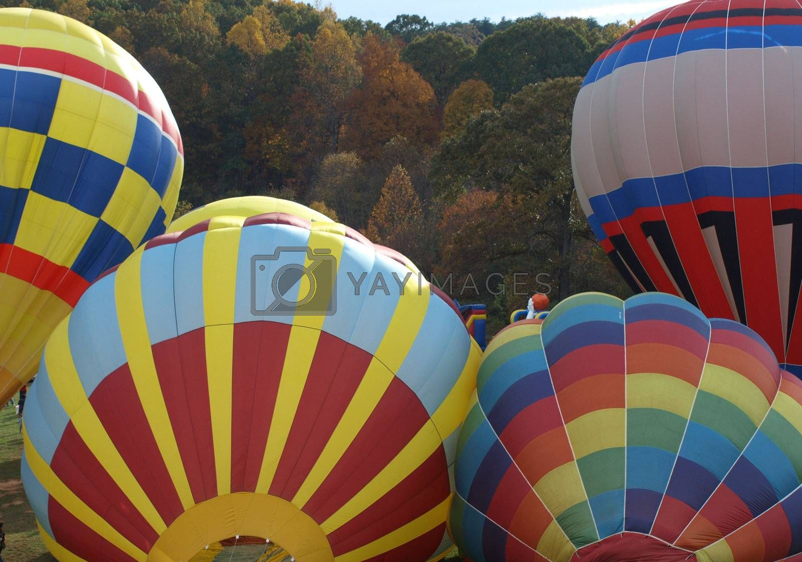 Hot air baloons by northwoodsphoto