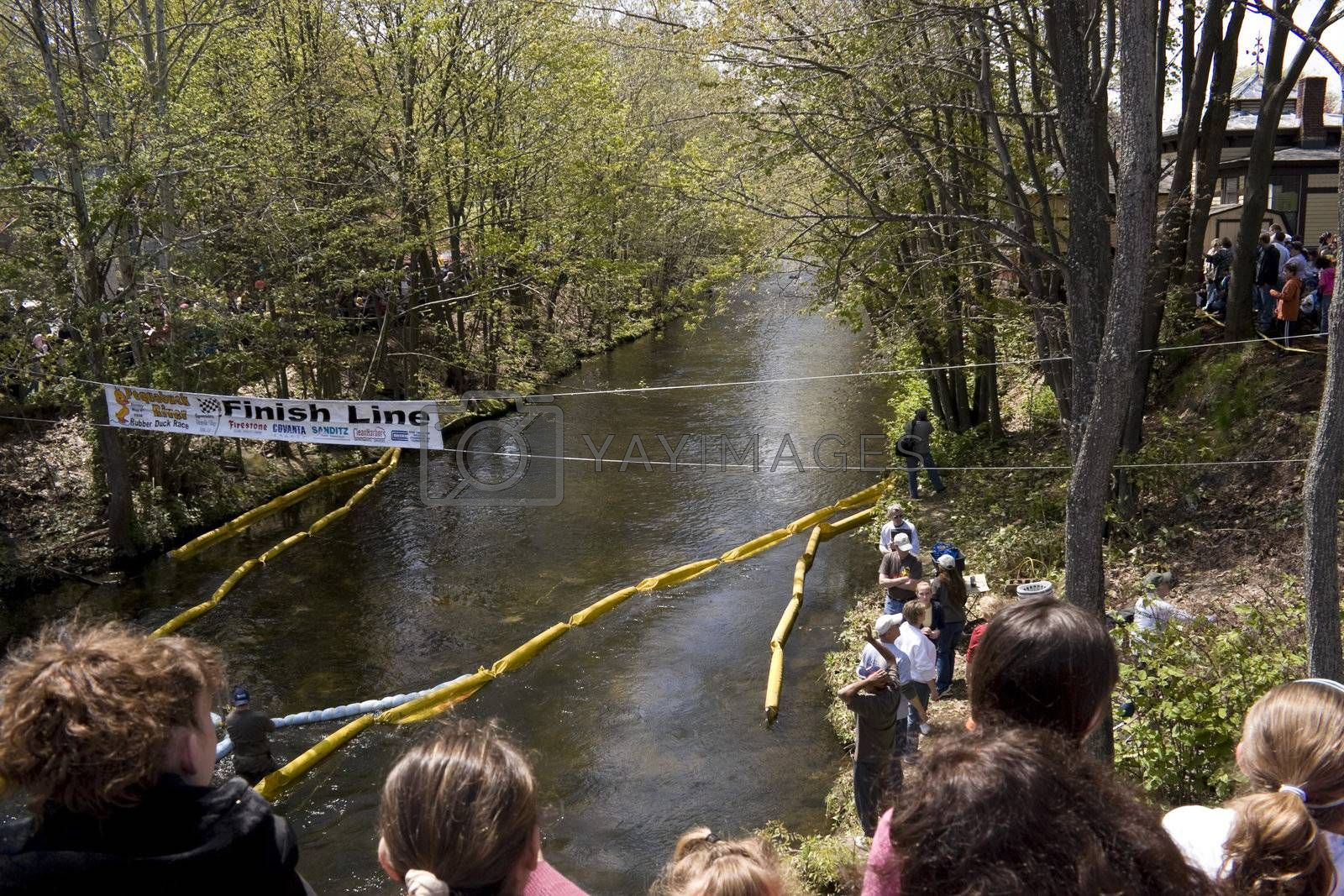 Forestville Duck Race by graficallyminded