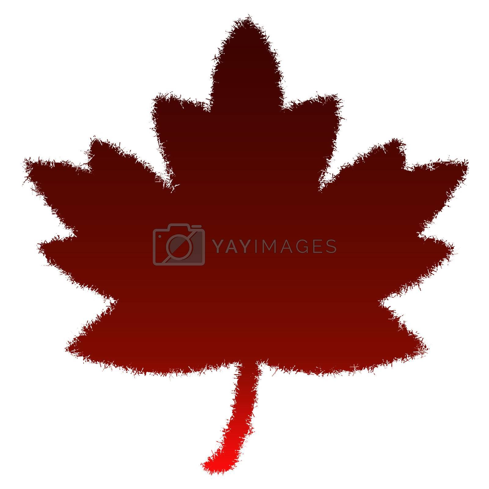 Autumn leaf on a white background. A red autumn leaf