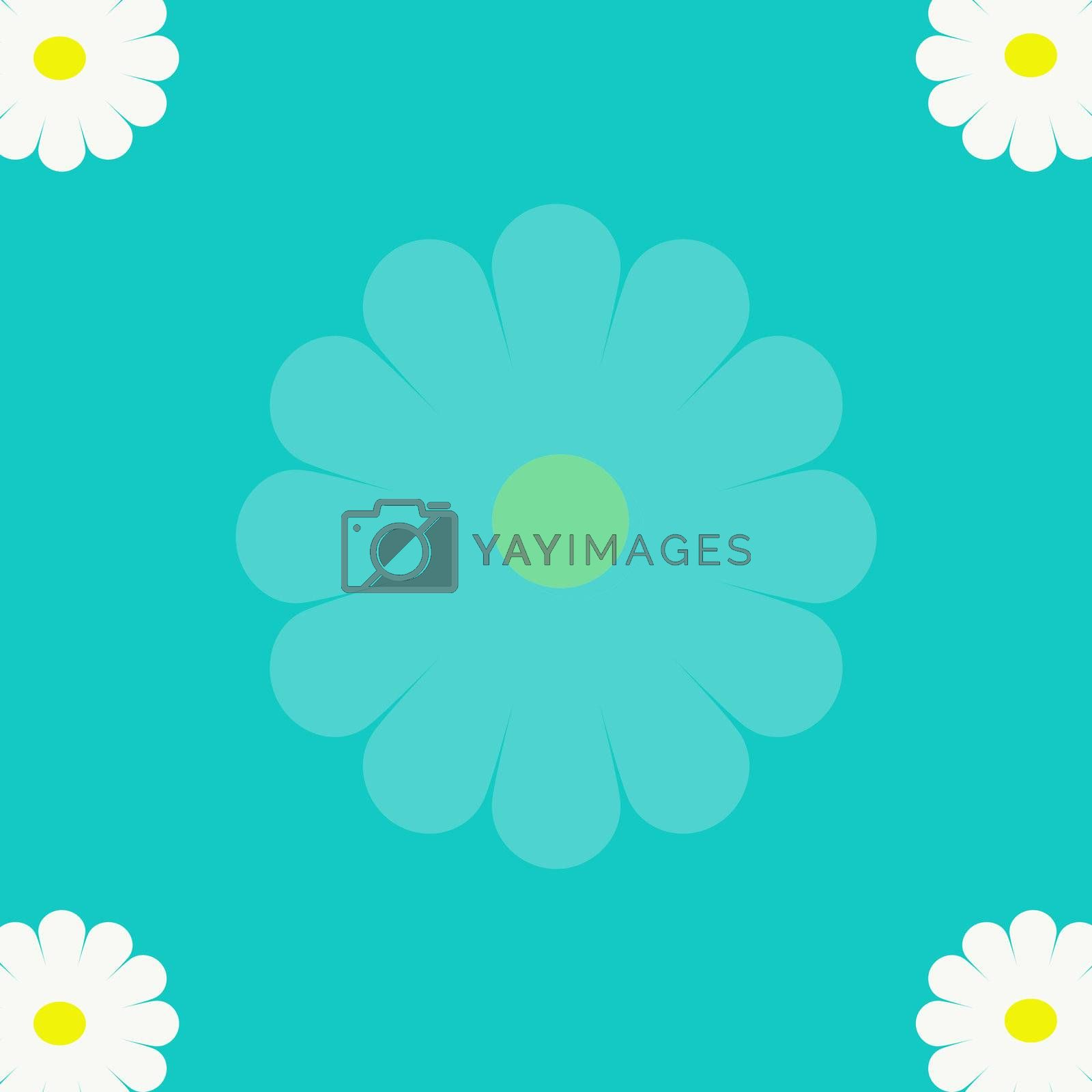 camomile on a dark blue background. White camomile with buds against the blue sky