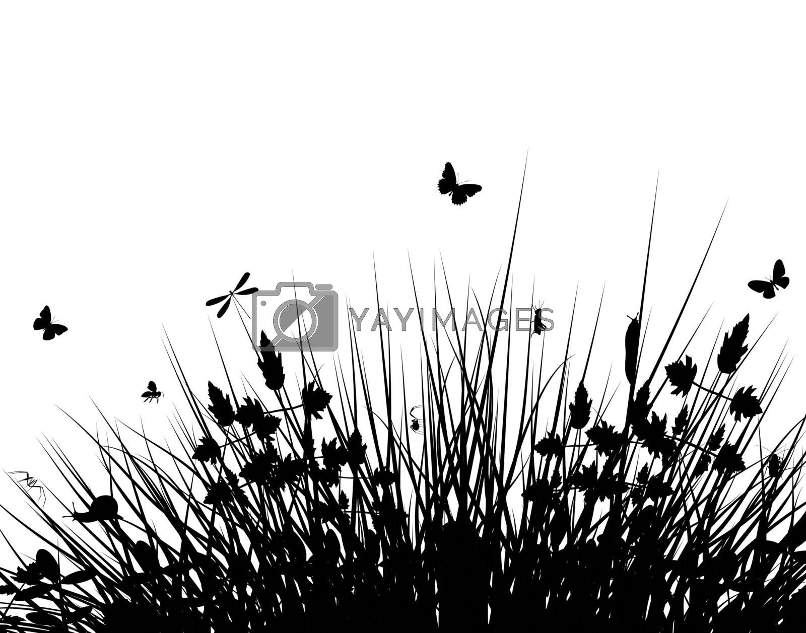 Meadow silhouette by Tawng