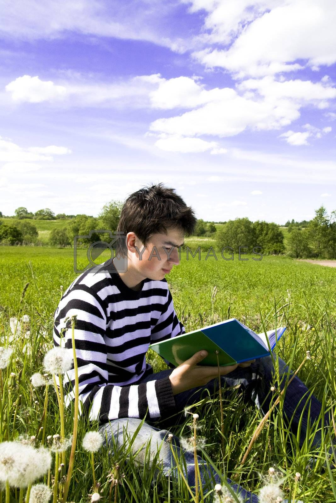 Reading boy sit in a field with a book