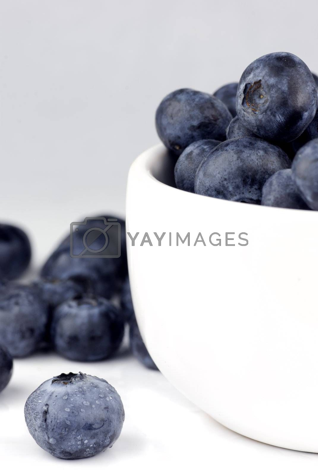 blueberries in a bowl by massman