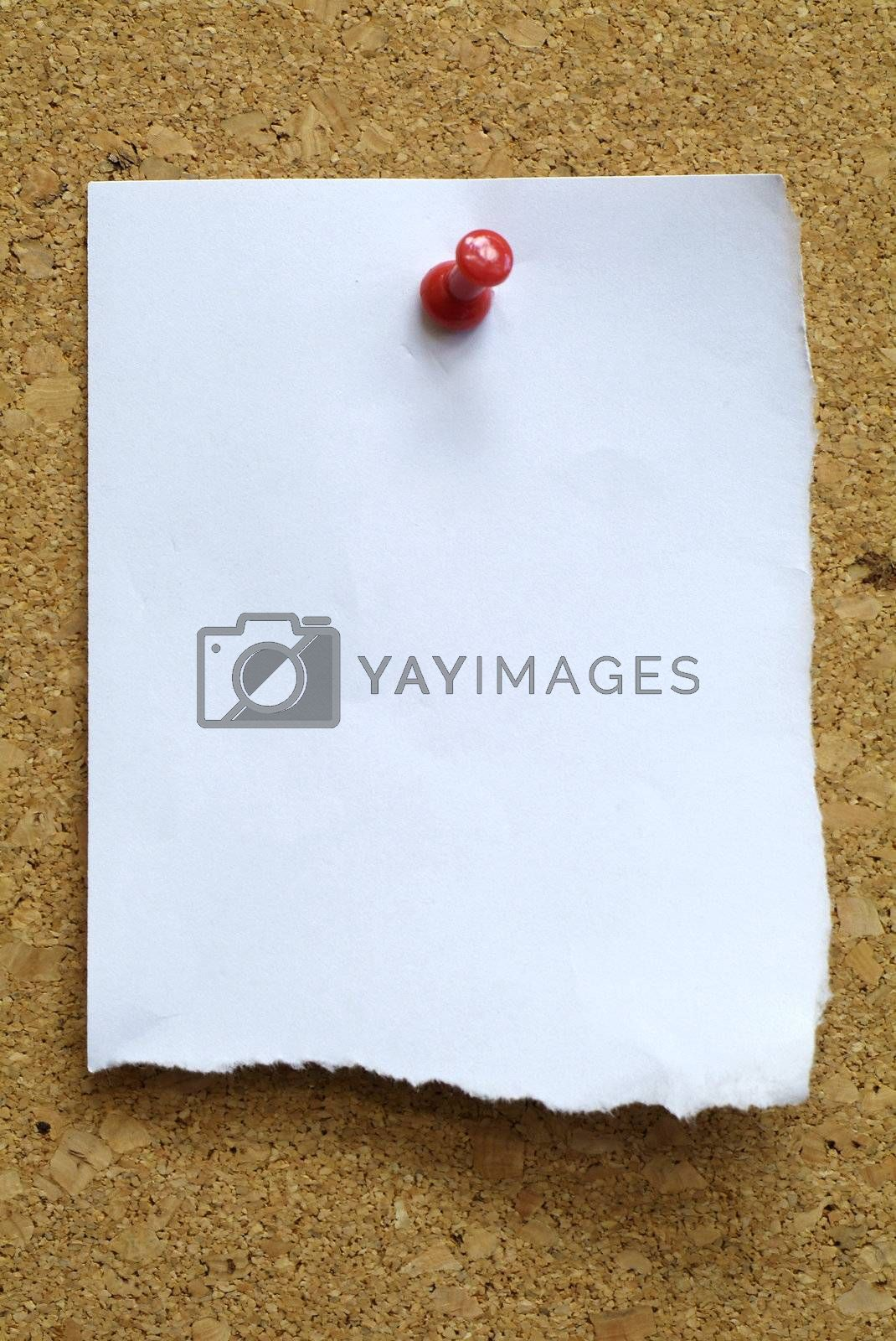 Paper note on cork plate by epixx