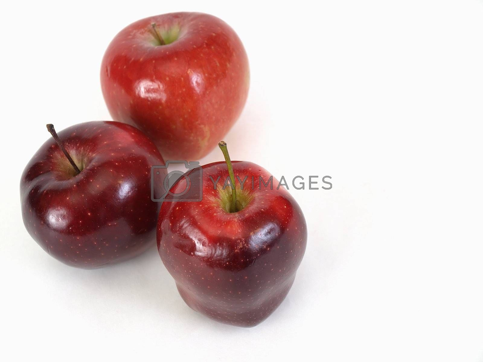 Three red delicious apples on an isolated white background.
