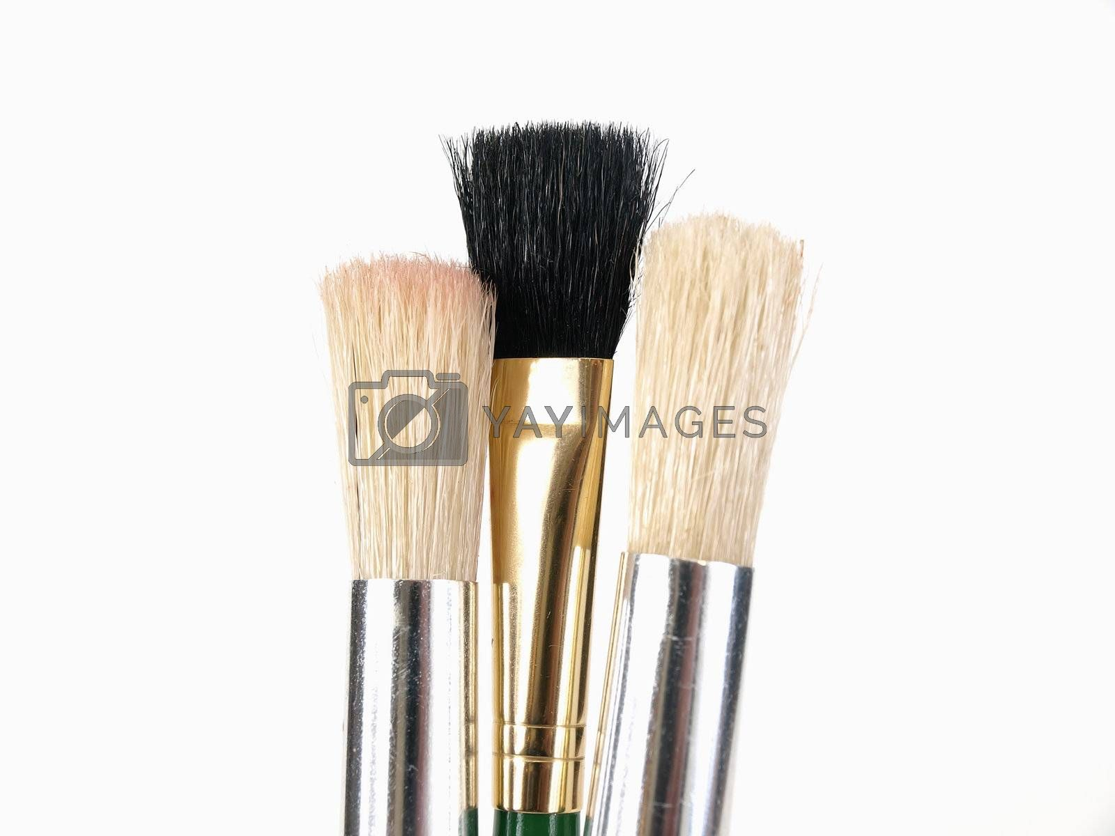 A trio of Brush Tips, two white, one black, over a white background.