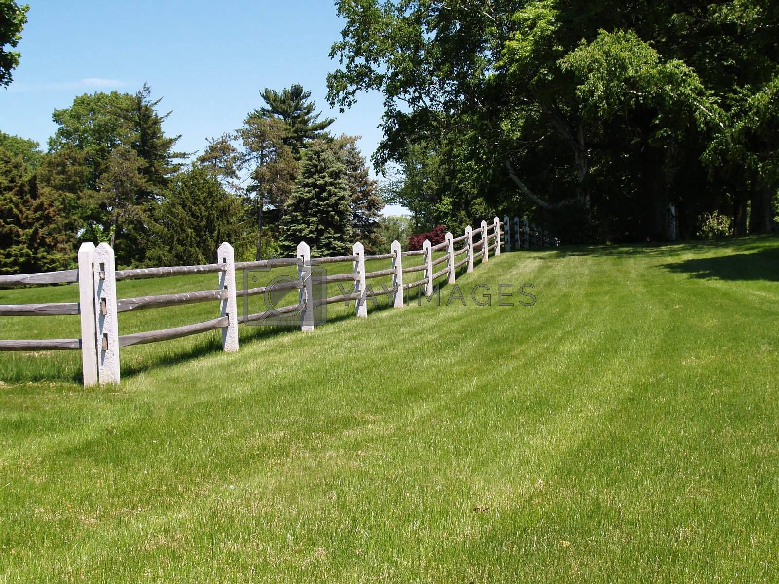 a worn wooden fence by field and trees