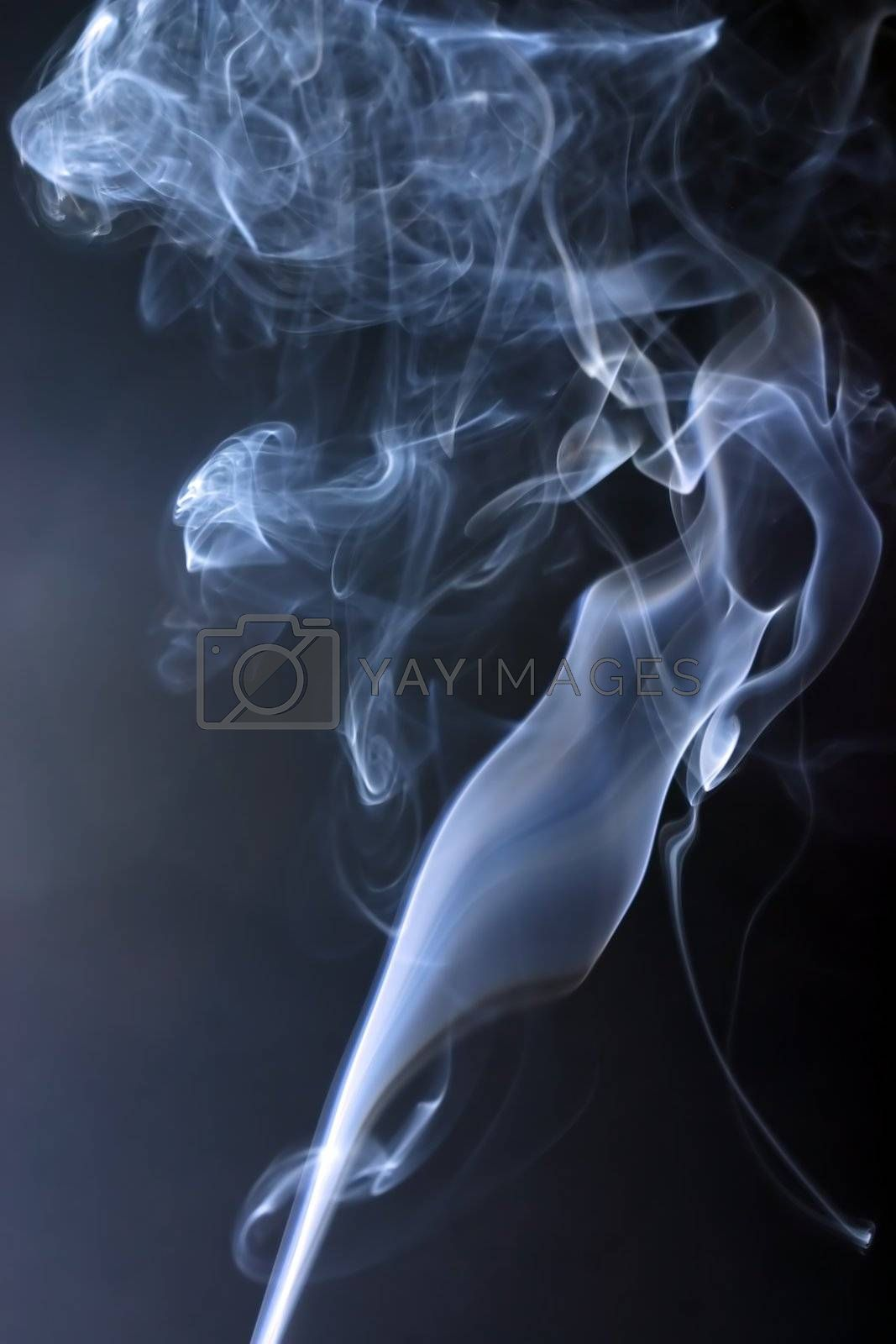 different versions of smoke loops