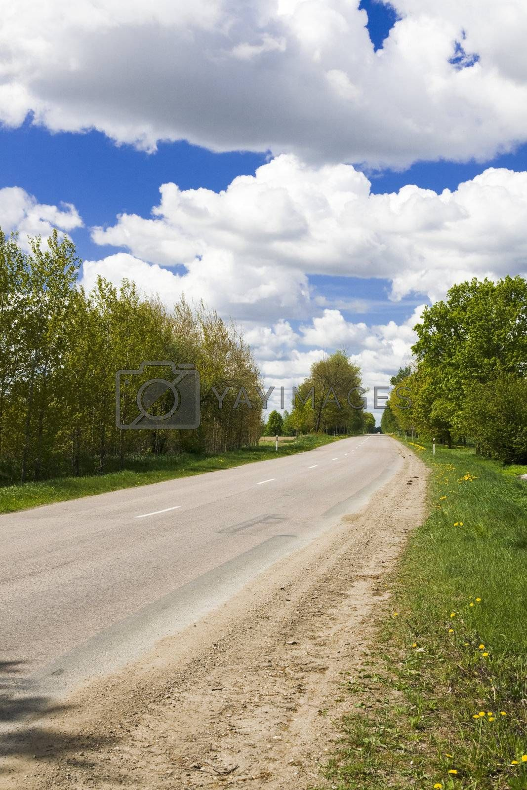 Road to home. Early spring landscape at sunny day