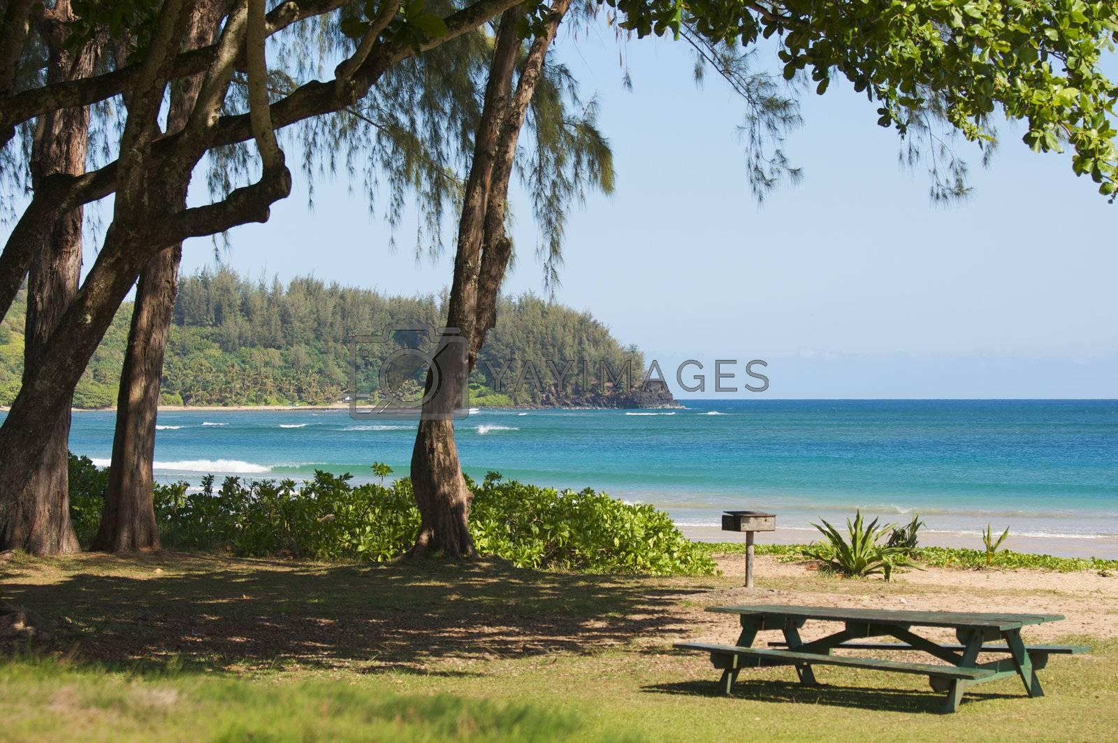 Inviting Tropical Park - Halalei Bay, Kauai, Hawaii