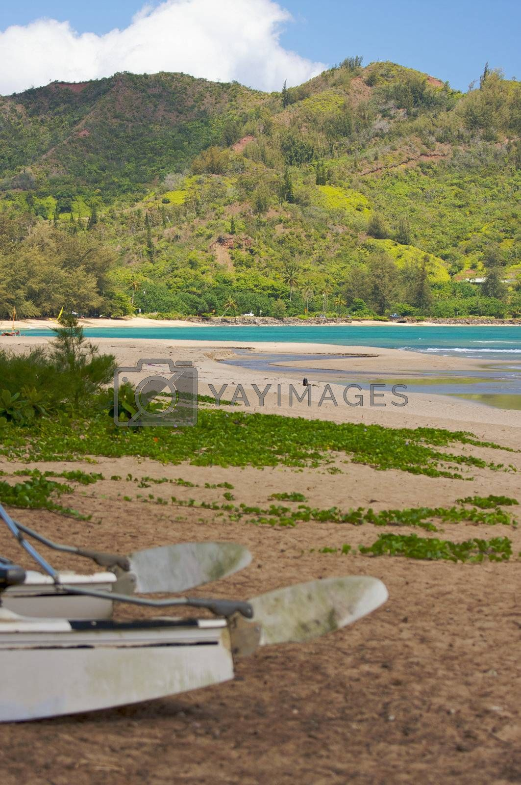 Tranquil Bay Scene in the Early Morning with Catamaran.