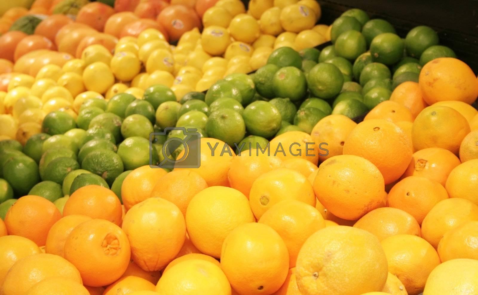 Asorted cirus fruits in supermarket
