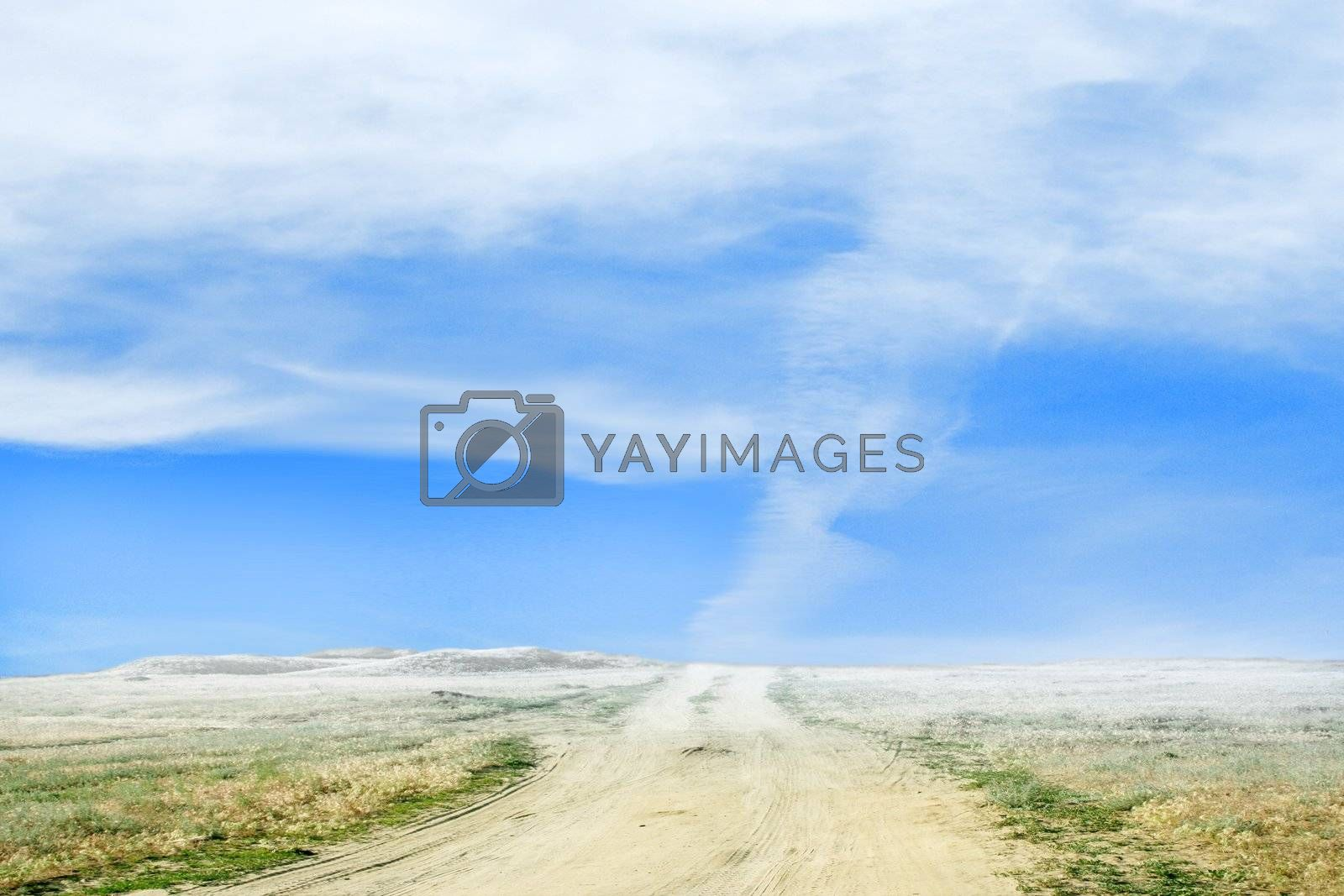 scene of the empty rural road with cloud on horizon