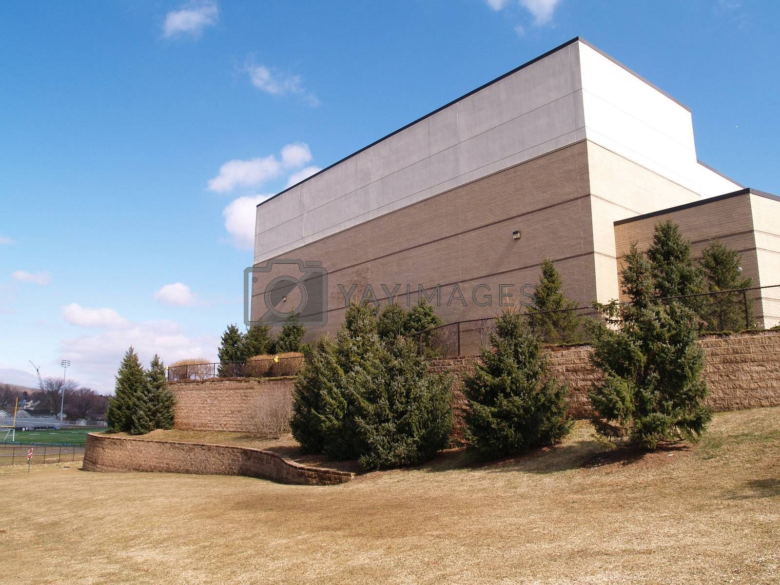 evergreen trees and grass by a modern building