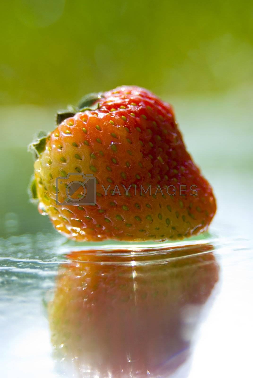 summer strawberry from garden