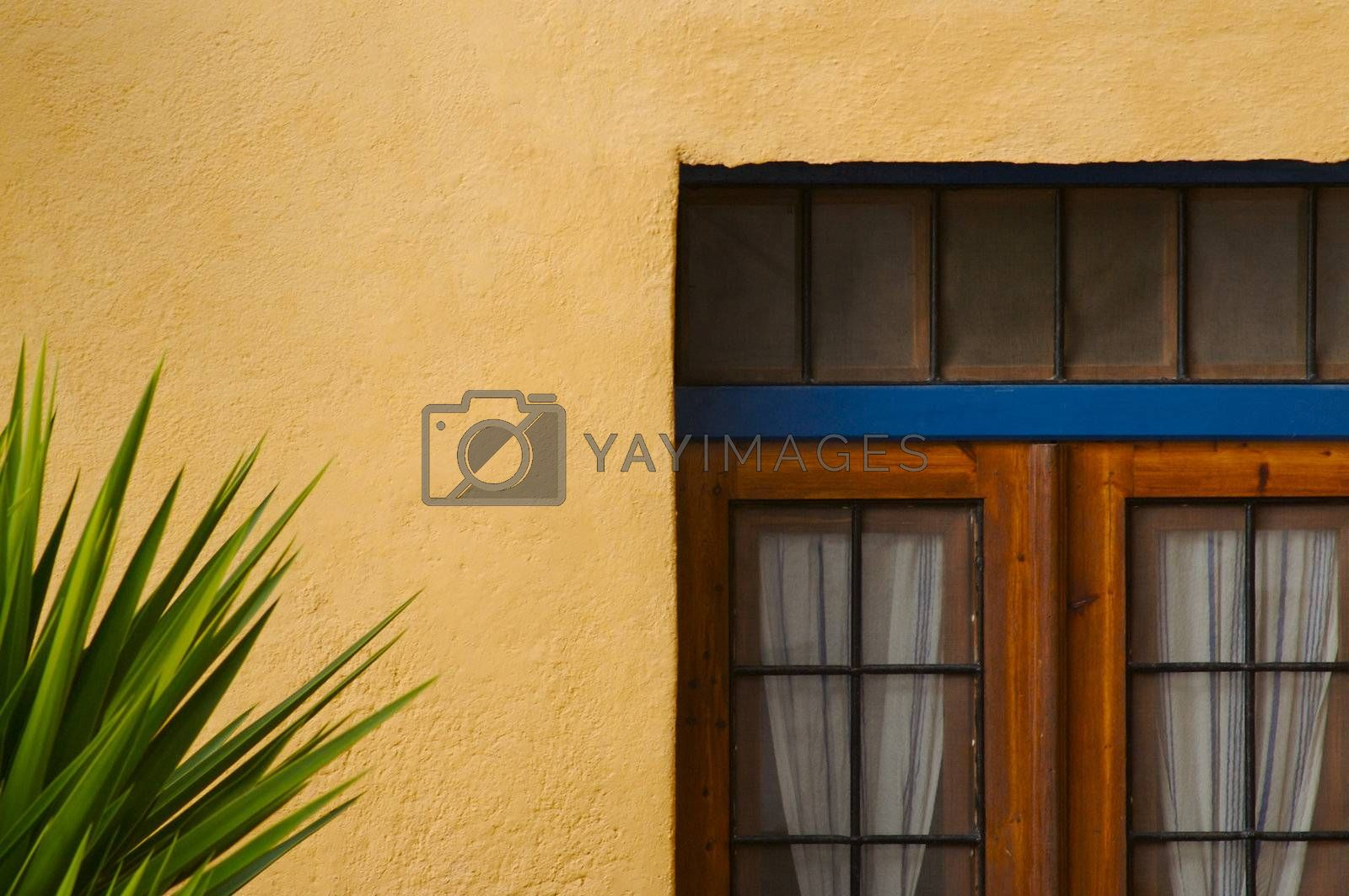Abstract close-up of Wall and Door of Santorini home.