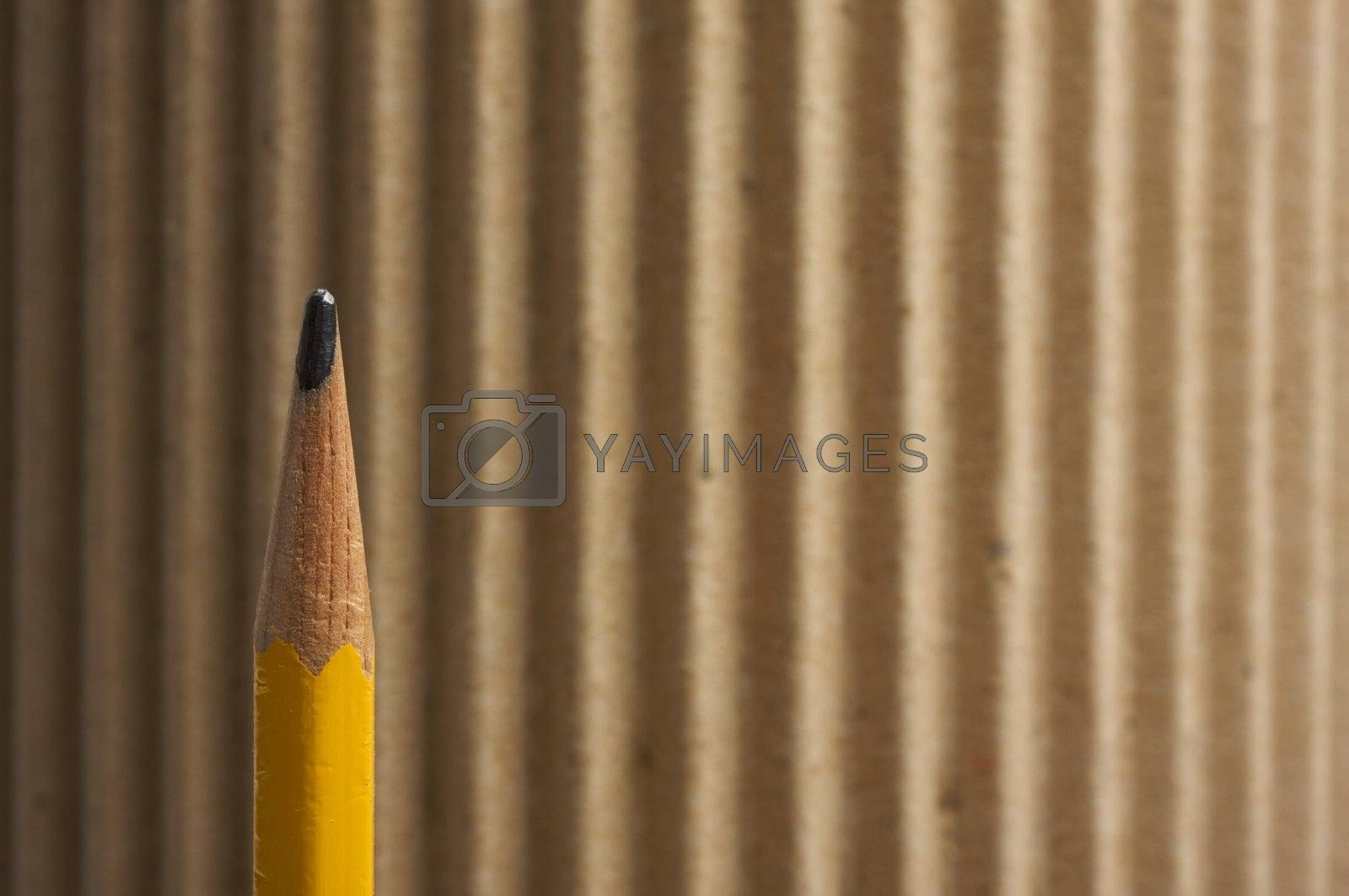 Rounded Corrugated Cardboard Background with Narrow Depth of Field.