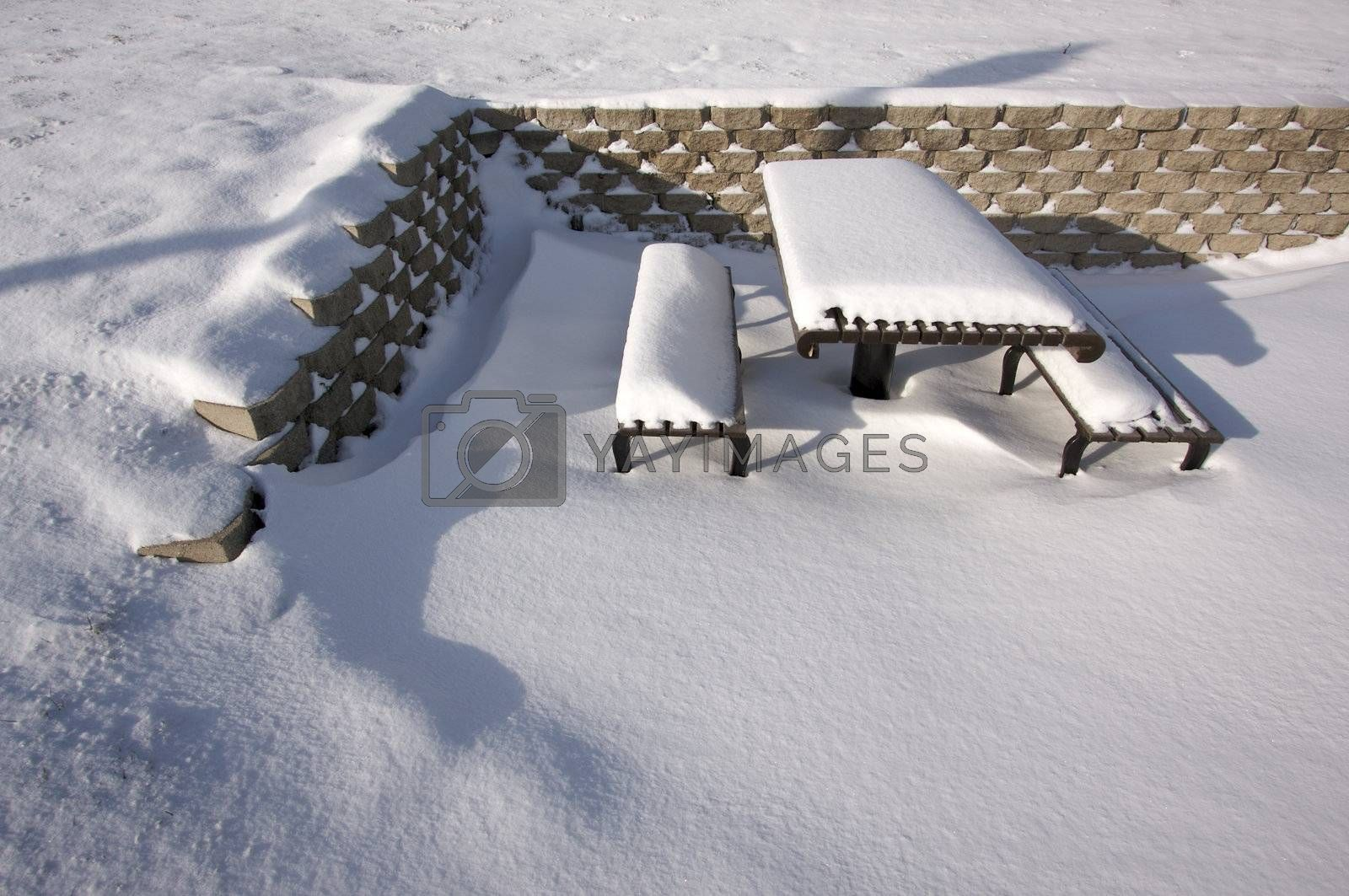 Picnic Table covered with Snow one Early Morning