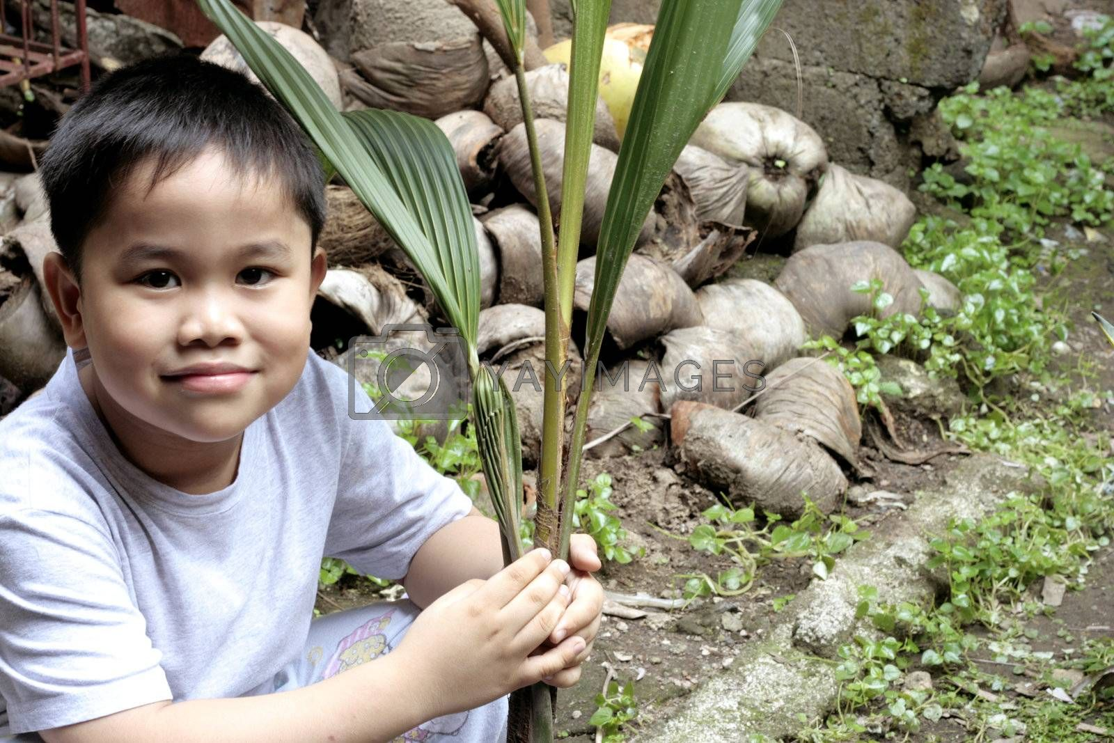 Child Holding a Coconut Seedling - metaphor for investment and future