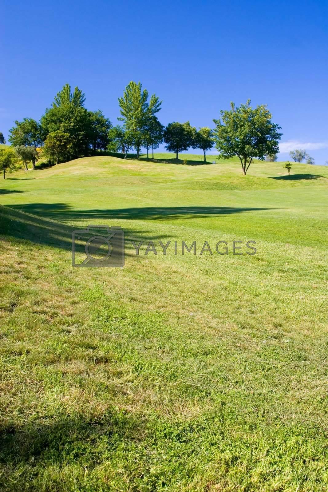 golf field with deep blue sky
