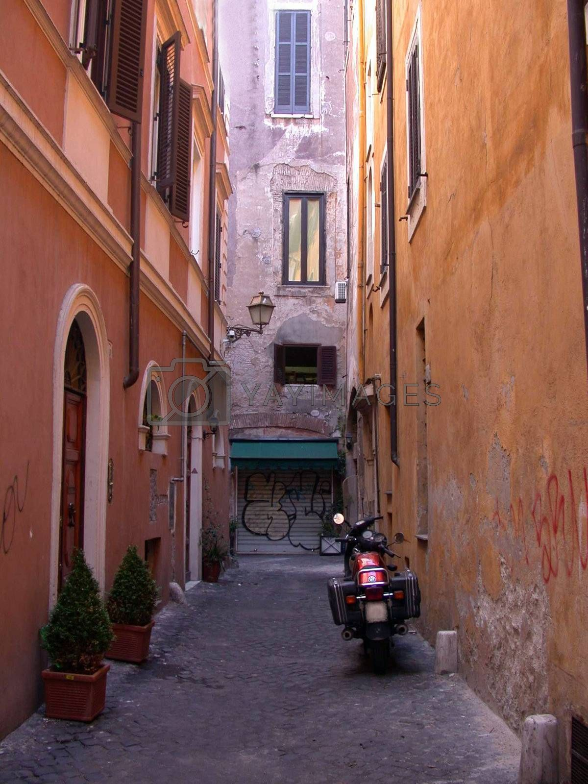Backyard in rome