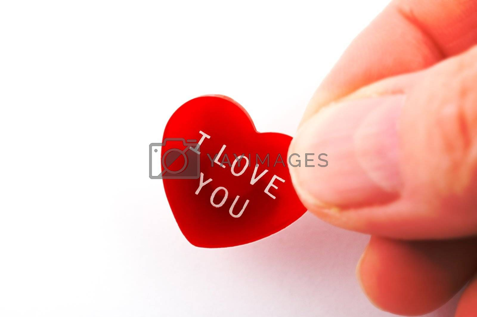 A hand holding a red heart with I Love You message with copy space isolated on white