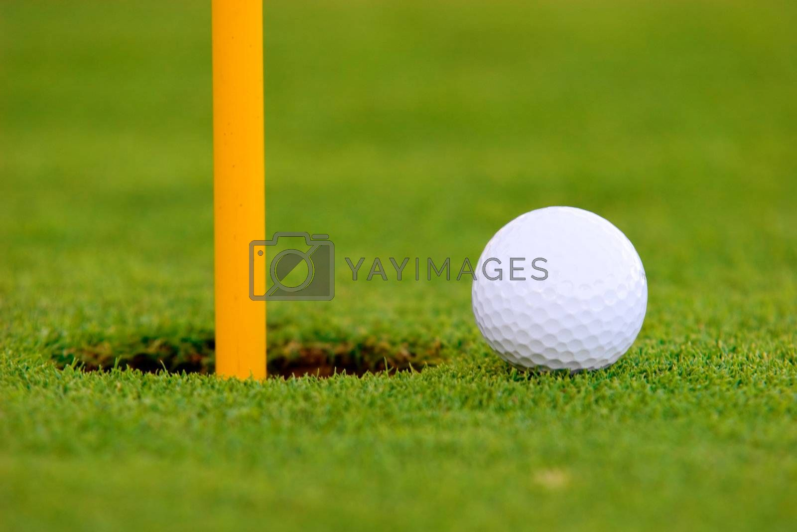 Golf ball on green, near hole.