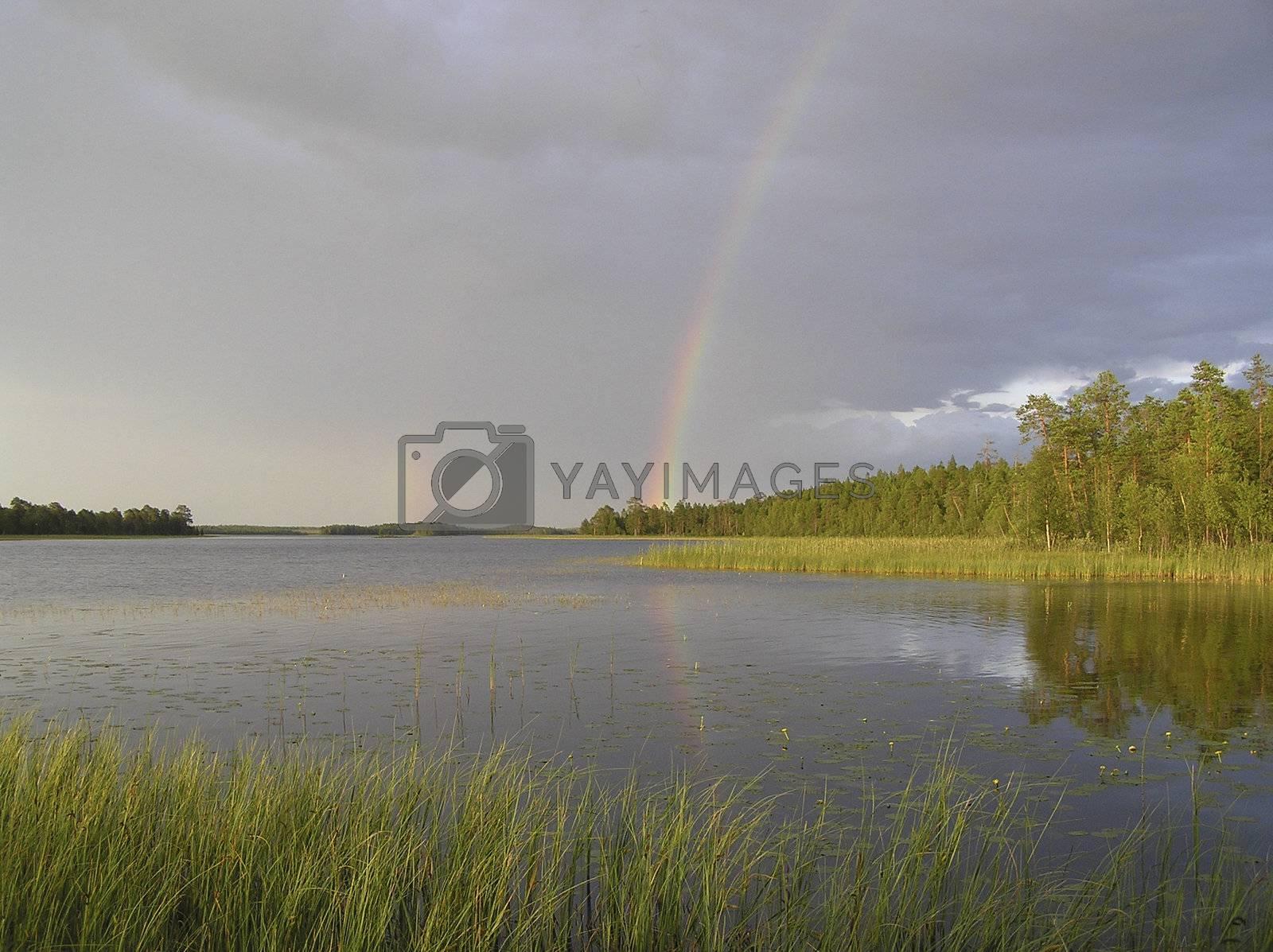 Rainbow over wood lake by eglazov