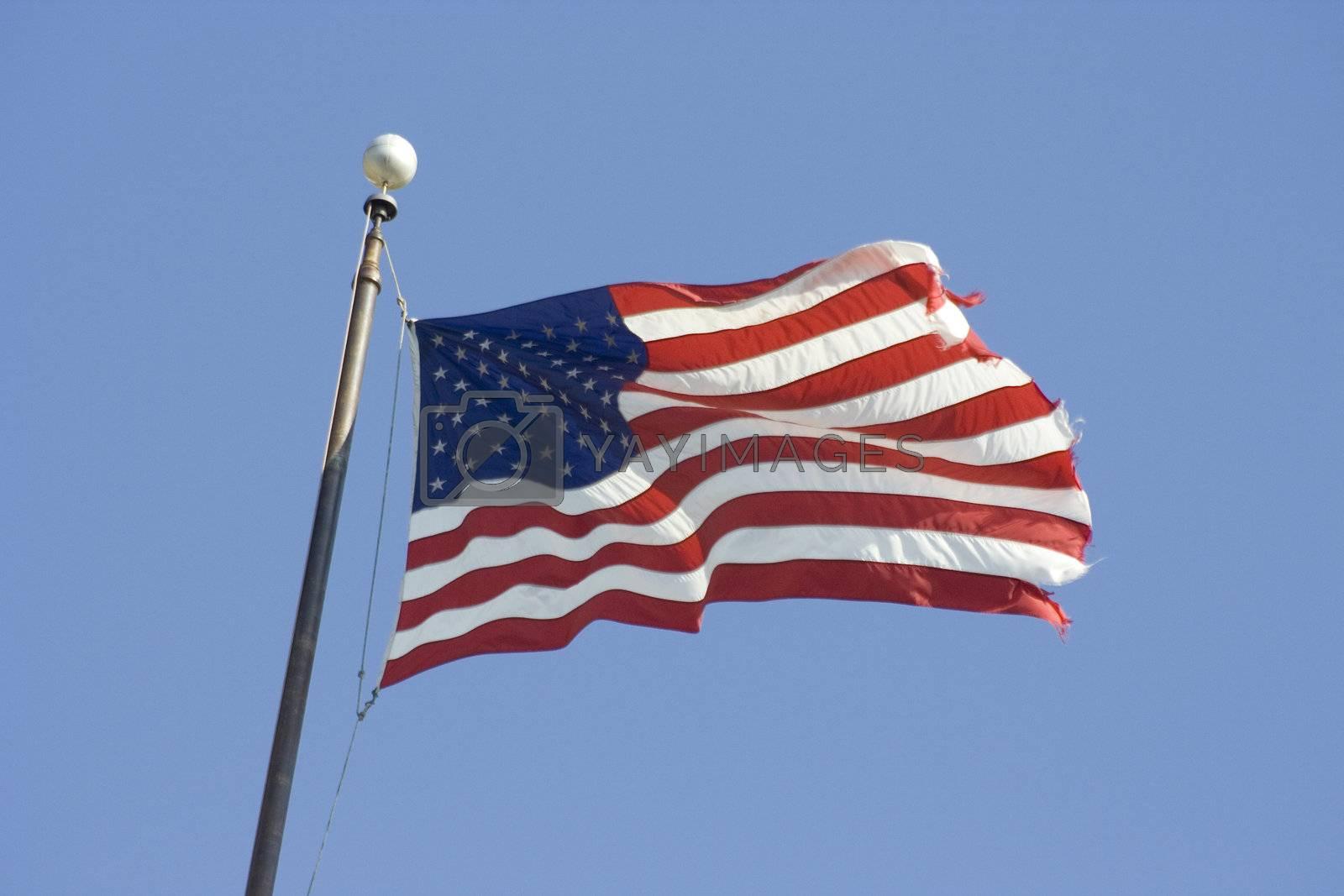 American Flag by jclardy