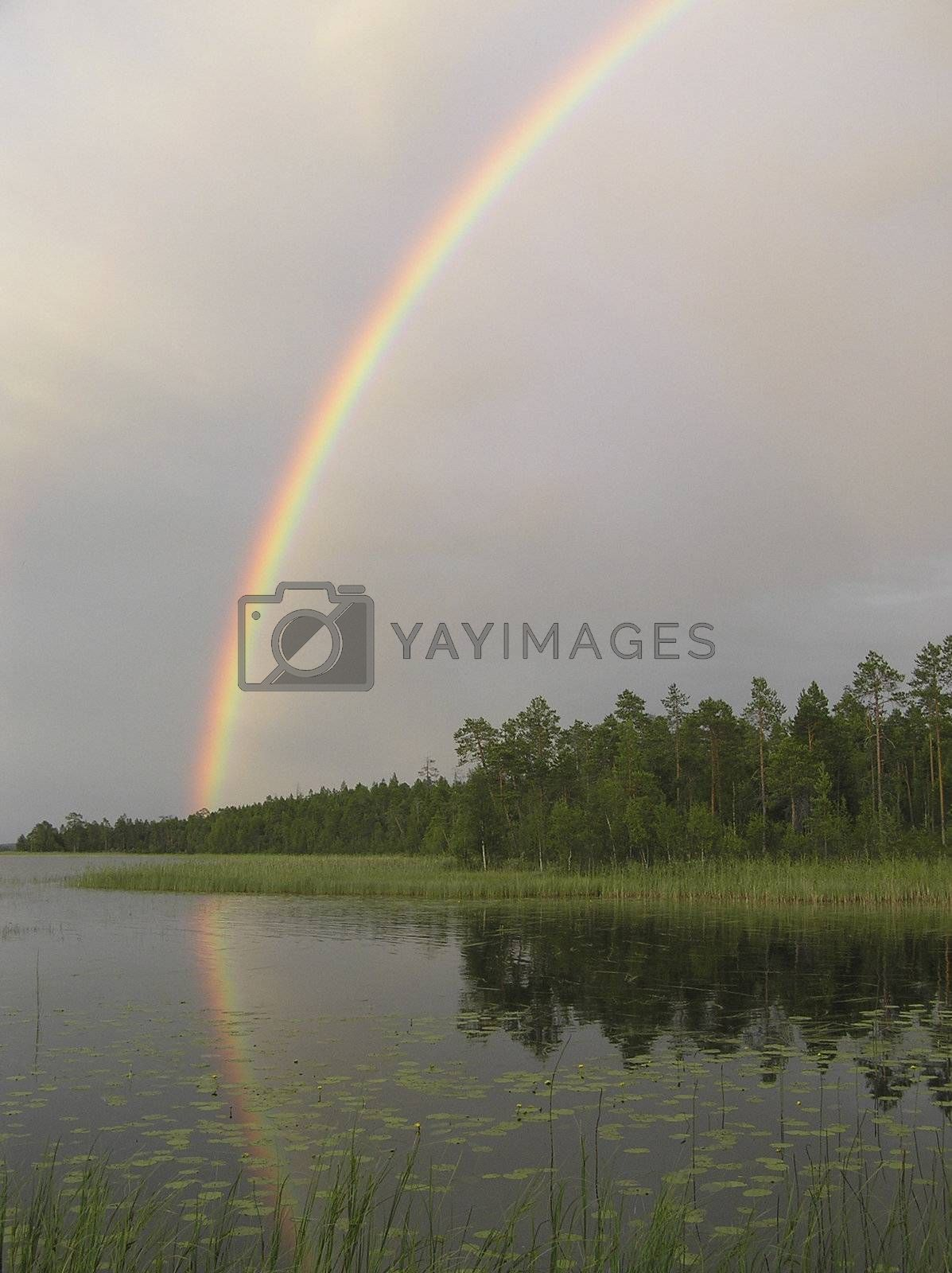 The rainbow in the cloudy sky is reflected in wood lake