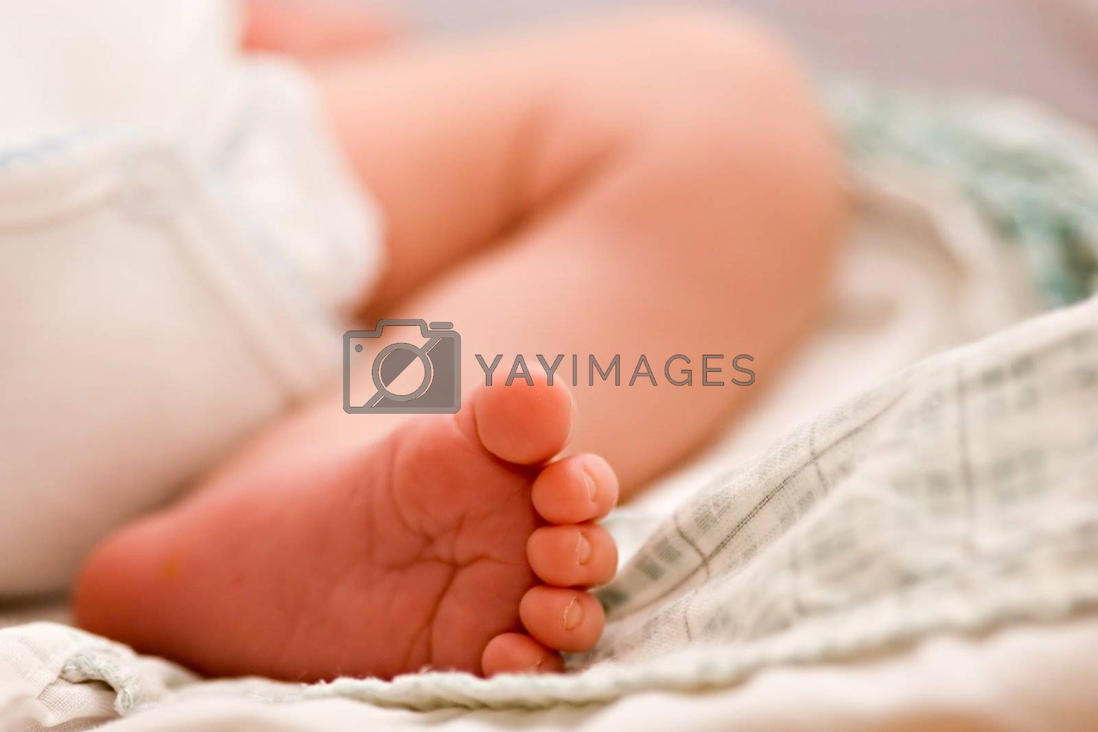 Close up of baby foot. Shallow depth of field.