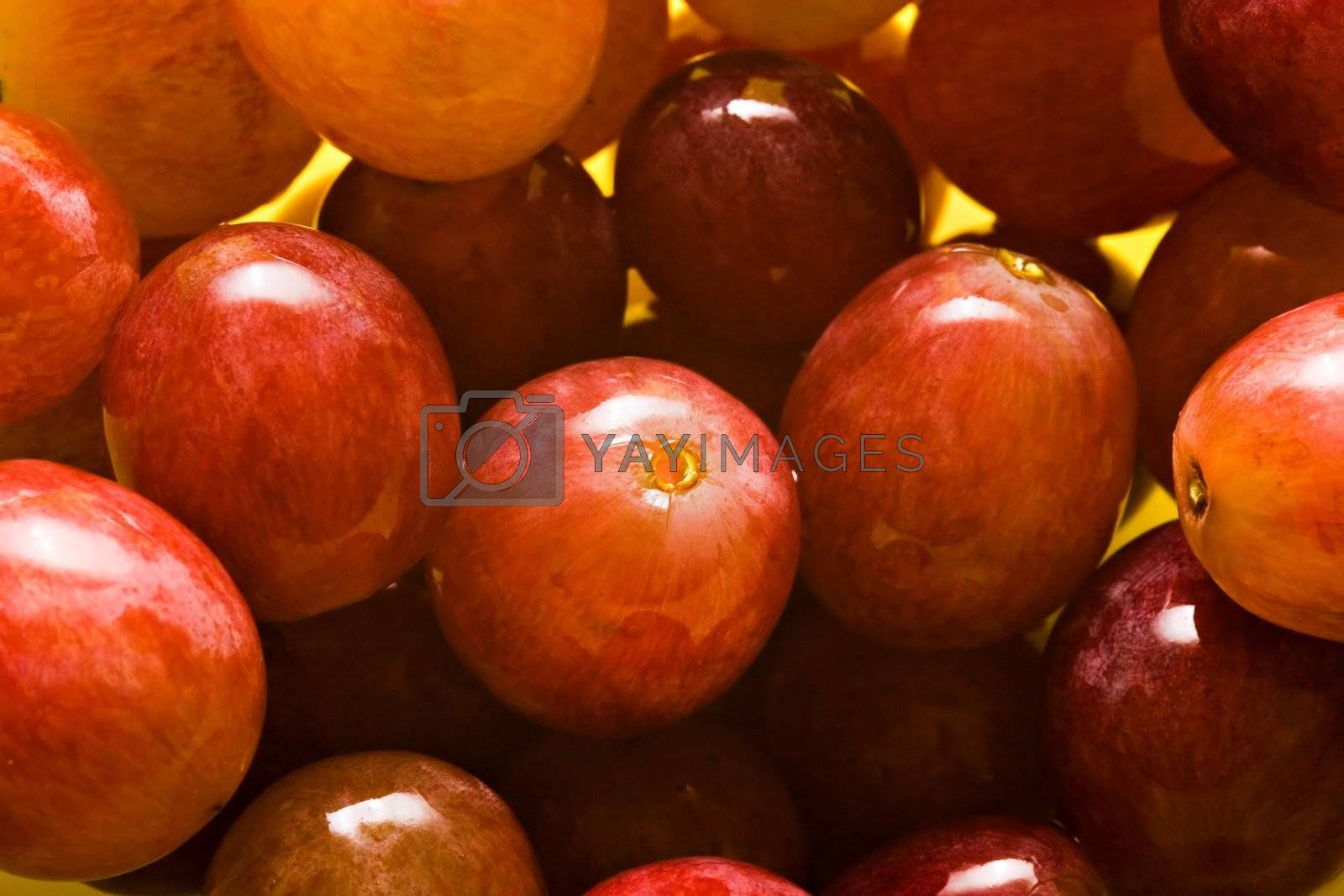 Wet grapes on bowl close-up