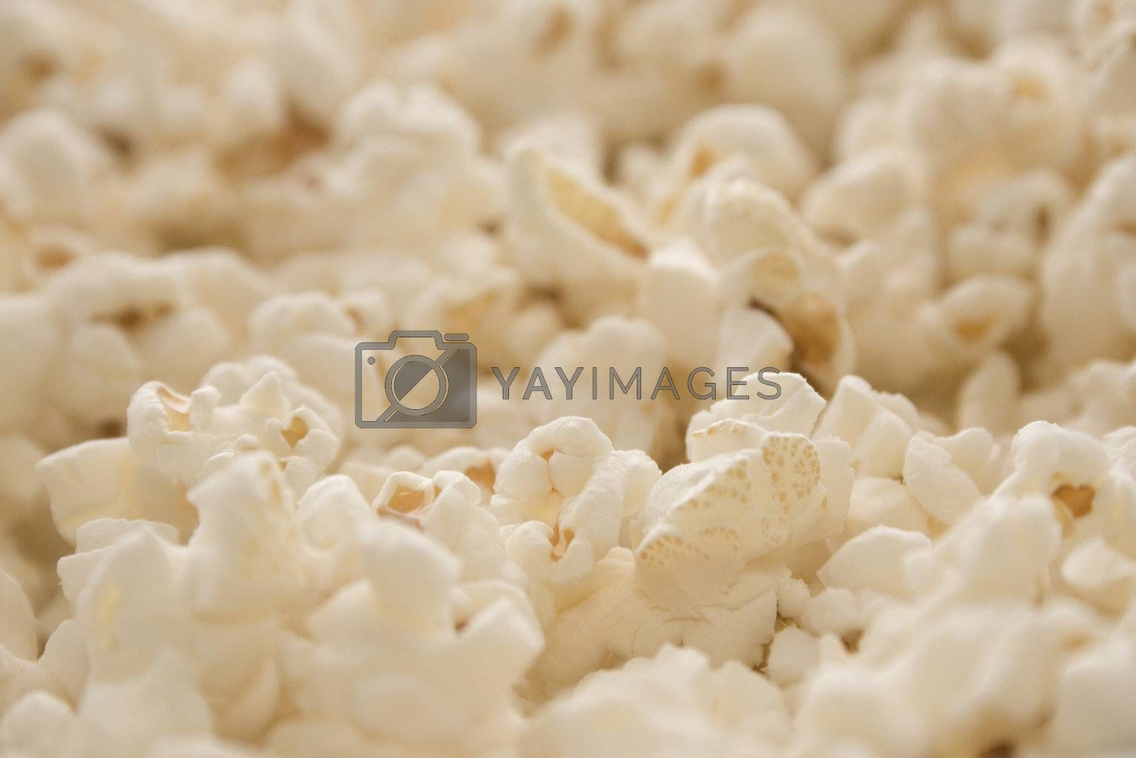 Close-up of popcorn with shallow depth of field for use as a background.