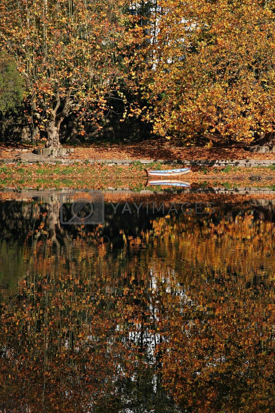 Royalty free image of autumn scene by ajn