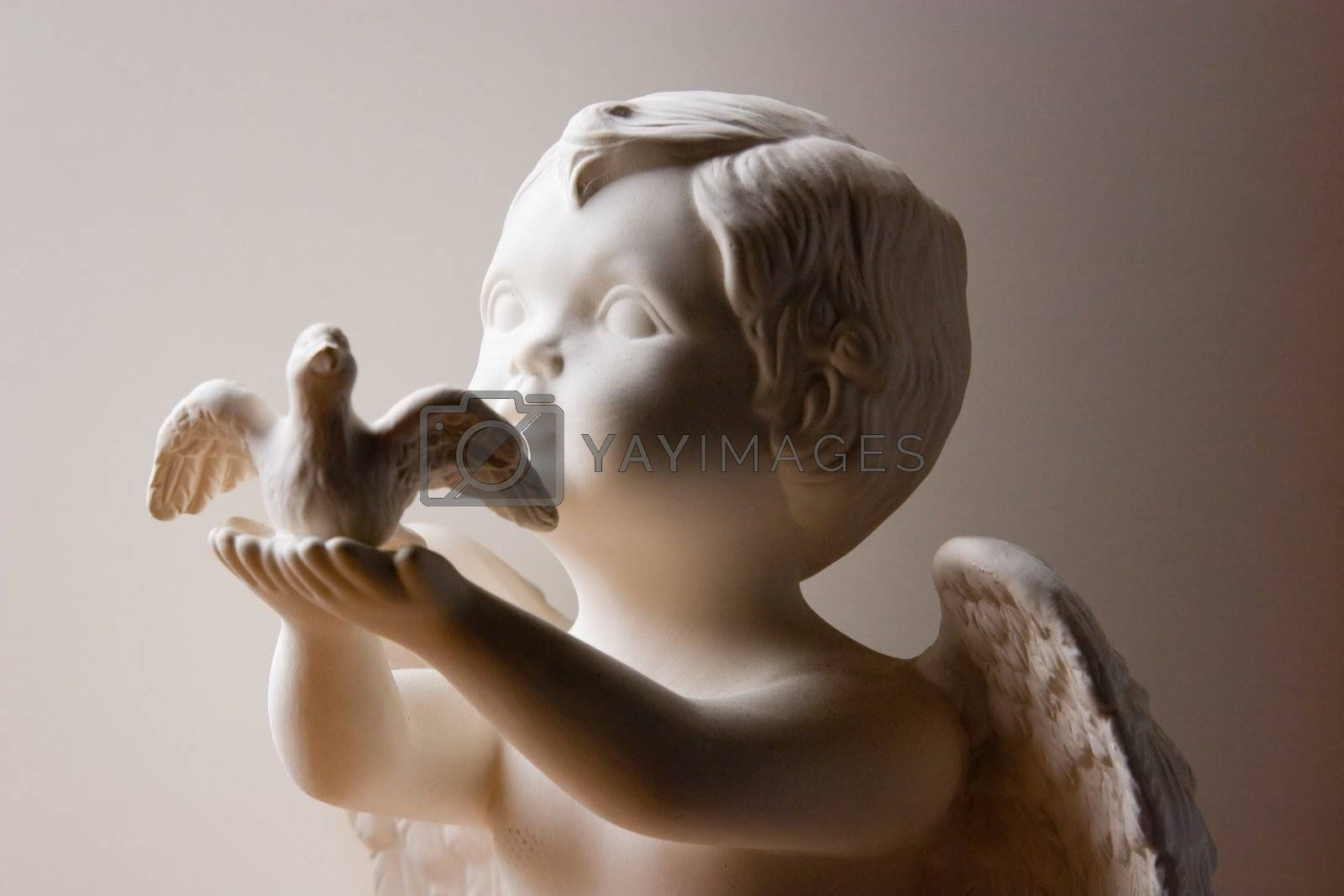 Angel and Dove on white background