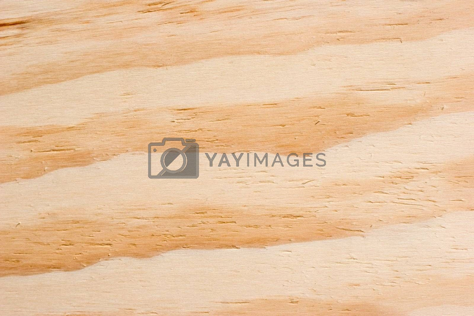 Wood detail abstract background.