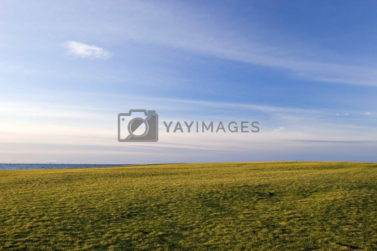 Green Field and blue sky near the sea at late afternoon light.